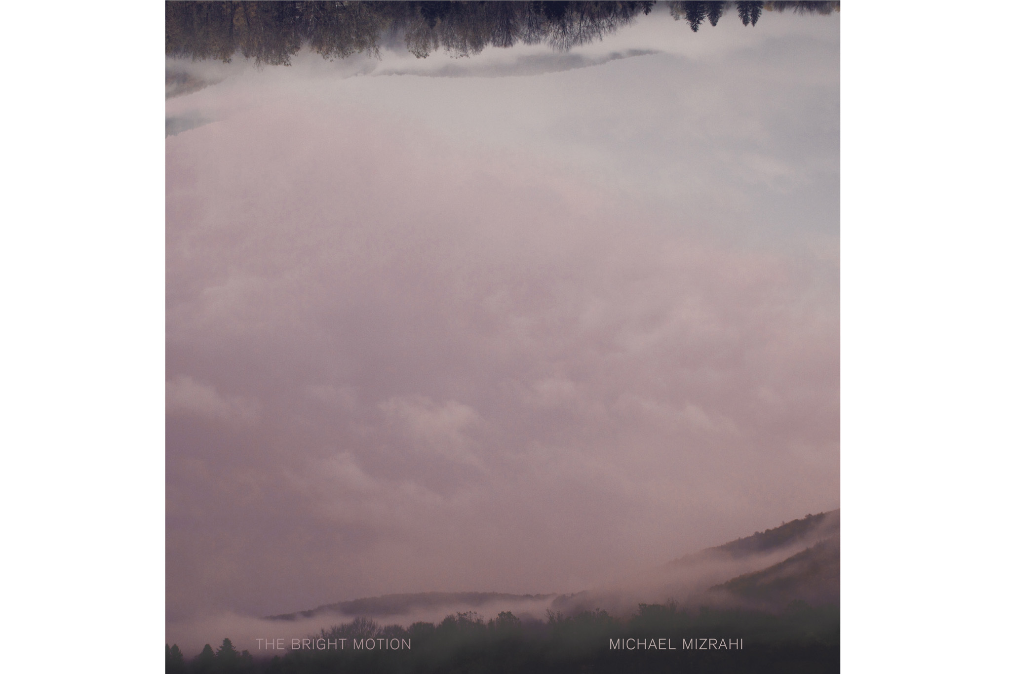 Michael Mizrahi, The Bright Motion (New Amsterdam)