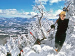 """Skiing-""""The Slides"""" at Whiteface Mountain"""