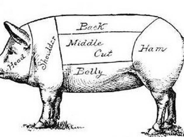 Suzanne Tracht Pig Talk