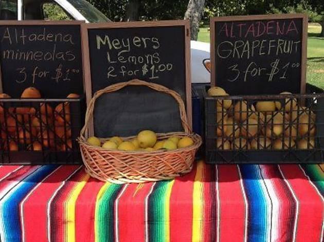 Altadena Farmer's Market