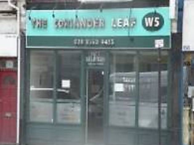 The Coriander Leaf