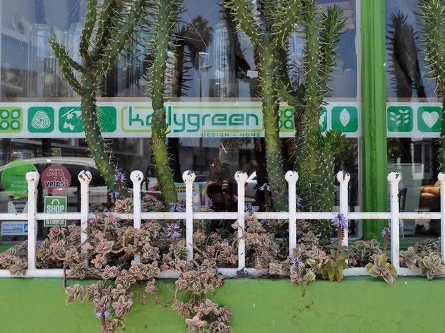 Kellygreen