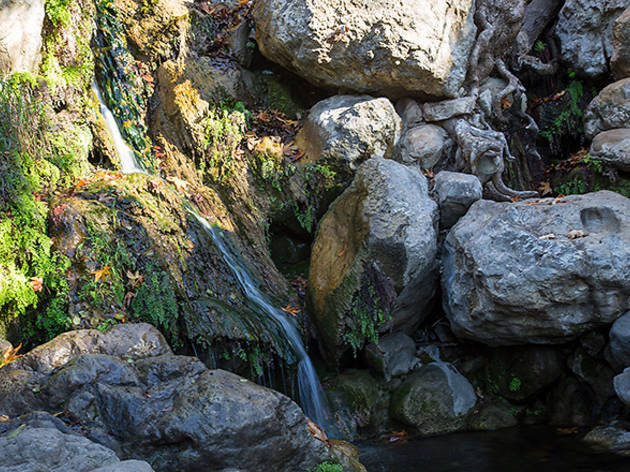 Hiking trails in LA: Solstice Canyon