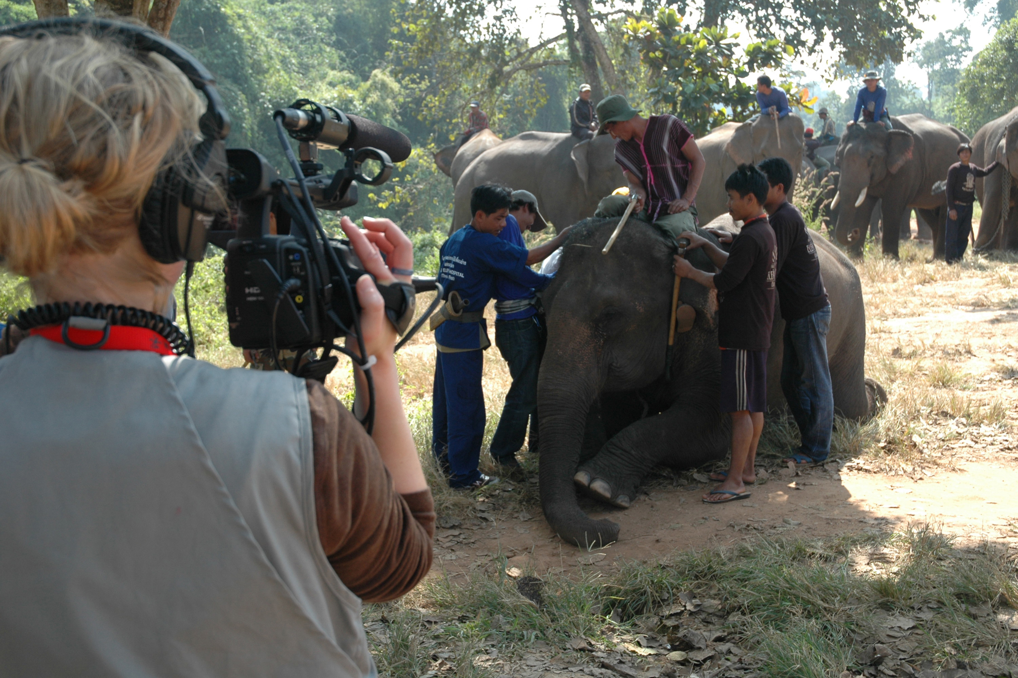 (Photograph: Wildlife Conservation Film Festivals)