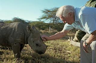 Africa, David Attenborough