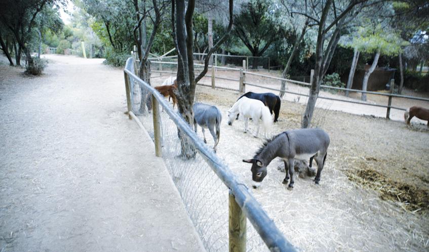 Parc de l'Oreneta