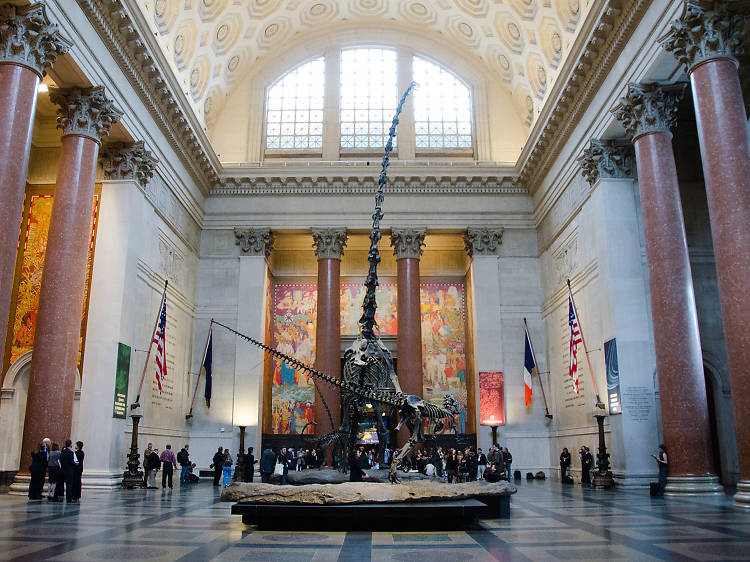 The best museums in NYC
