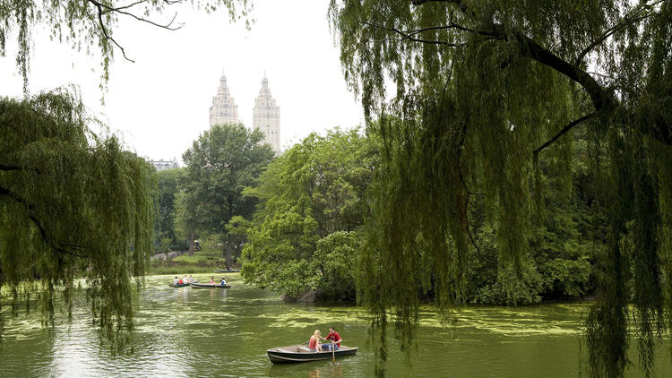 Boats and Alice at Central Park