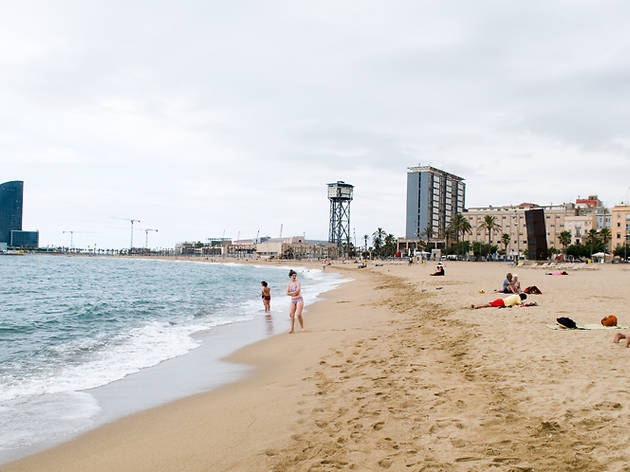 Barceloneta y el puerto