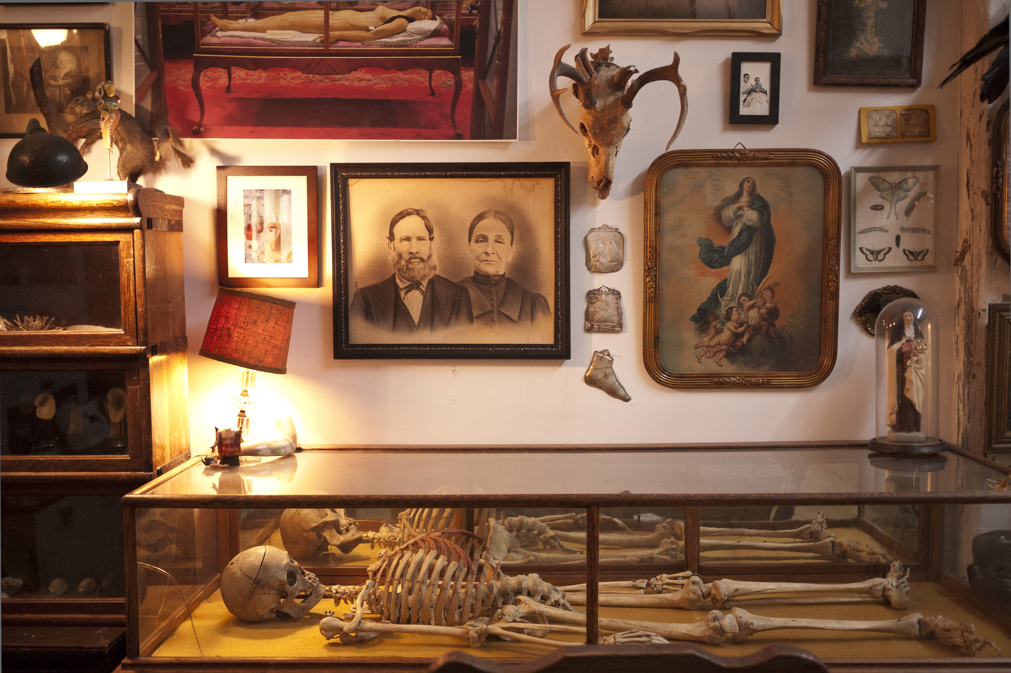 The Morbid Anatomy Anthology | Things to do in New York
