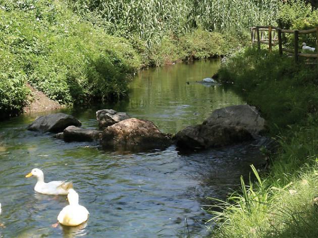 1. Los antiguos caminos del agua