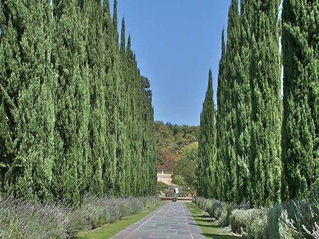 (Photograph: Courtesy Greystone Mansion)