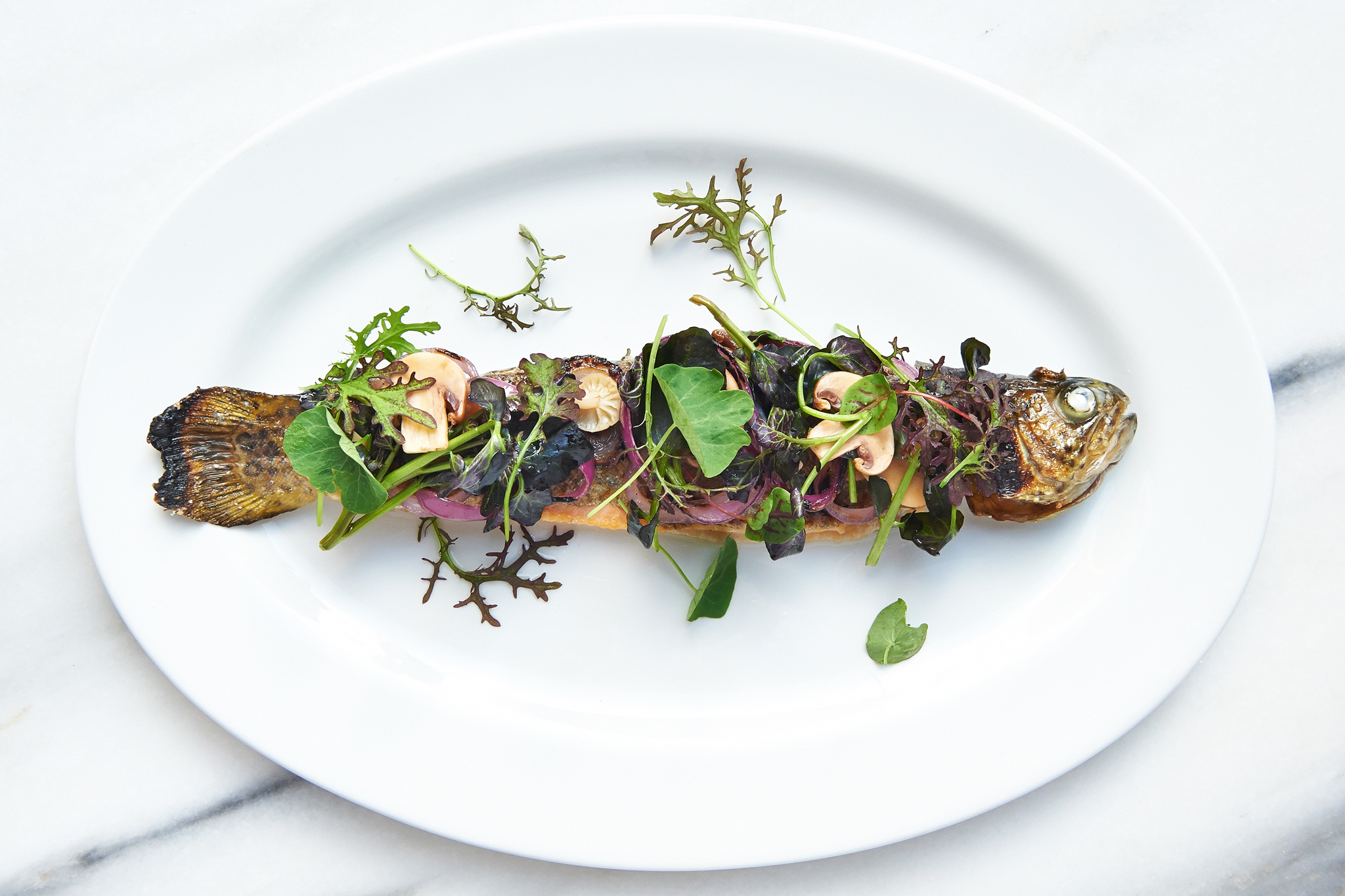 Smoked trout with watercress, pickled mushrooms and charred red onion at Maysville