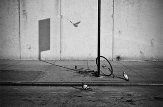 (Photograph: Walter Shin)