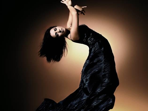 Ballet Flamenco Eva Yerbabuena