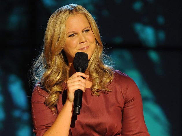 Inside Amy Schumer's Back Door Tour
