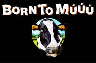 Born to Múúú. Doctor Music 30 anys