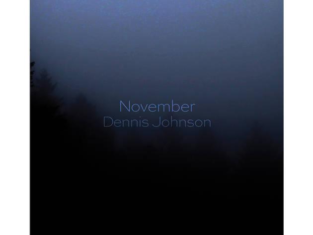 Dennis Johnson - November
