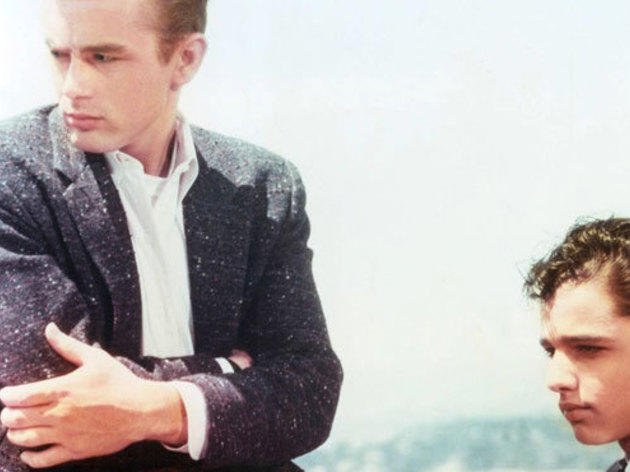 Youth-gone-wild movies: Rebel Without a Cause (1955)
