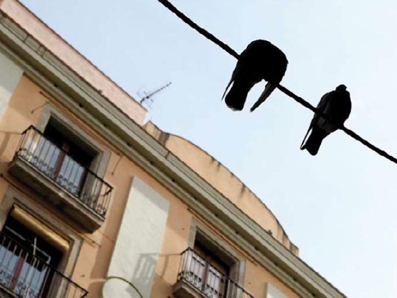 carrer Princesa