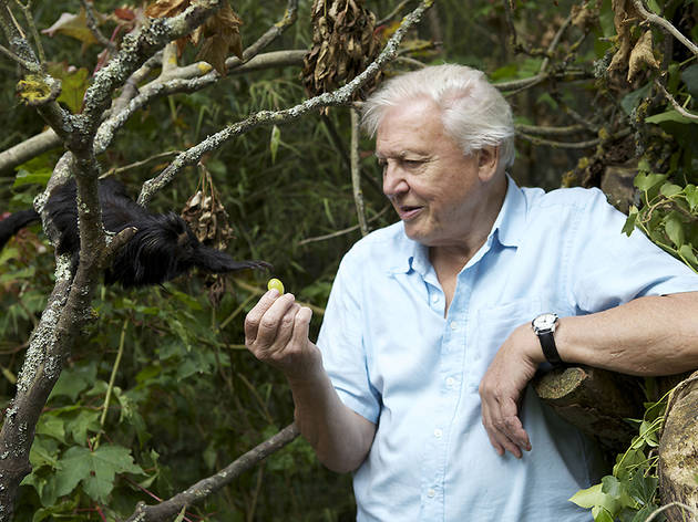 Attenborough's Ark: a Natural World Special