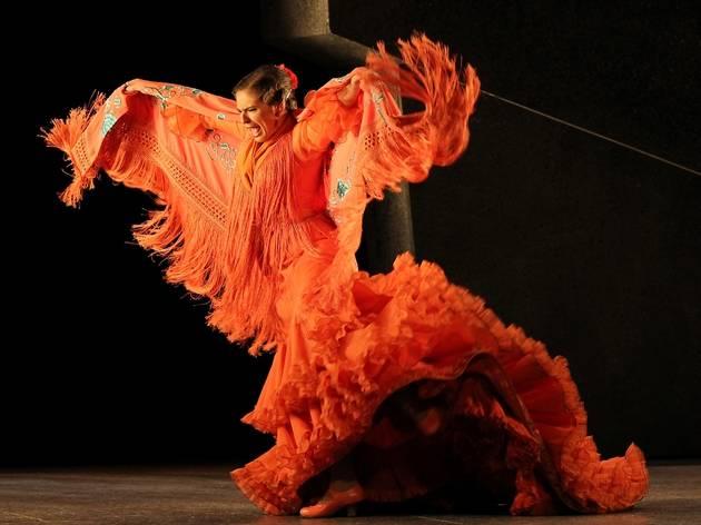 Ballet Flamenco Andalucia