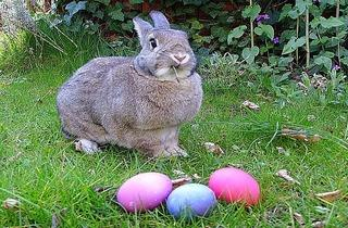 Easter Hoppening