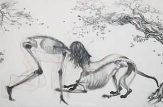 ('Symbiotic', extrait de la série 'Pathetic Fallacy', 2011 / Courtesy de la galerie Particulière / © Anthony Goicolea)
