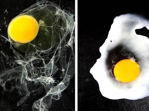 La poule (© FIPC 2012 - Emilie Gentils)