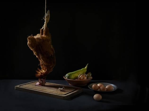 La poule d'Hondeghem (© FIPC 2012 - Francesca Mantovani)