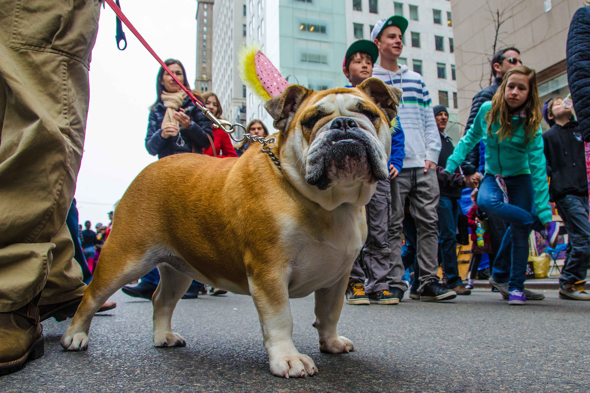 Photos: Easter Parade and Bonnet Festival (2013)