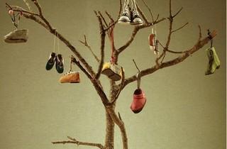 L'arbre de les sabates