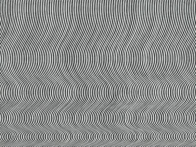 (Bridget Riley, 'Fall', 1963 / Londres, Tate Modern, Inv. T00616. / © Tate : purchased 1963, London 2012)