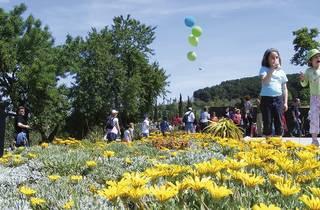 Planta't als botànics per primavera!