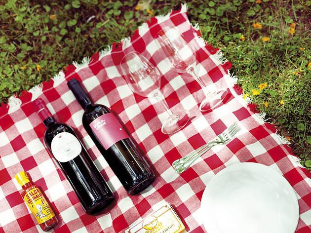 Pícnic del Petit Celler