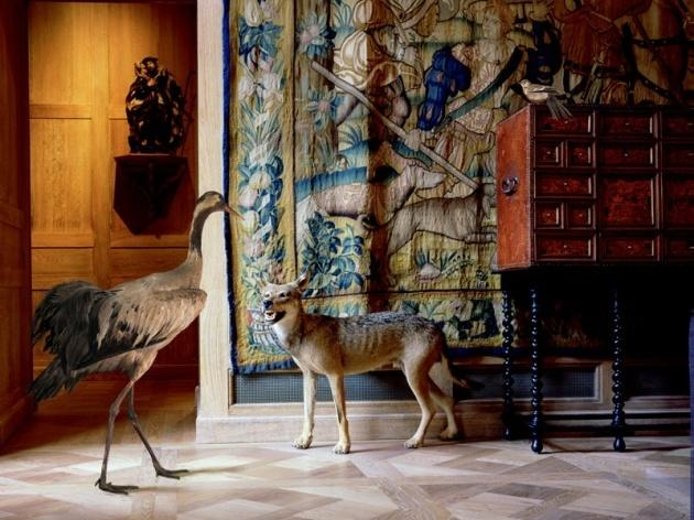 10 musées insolites