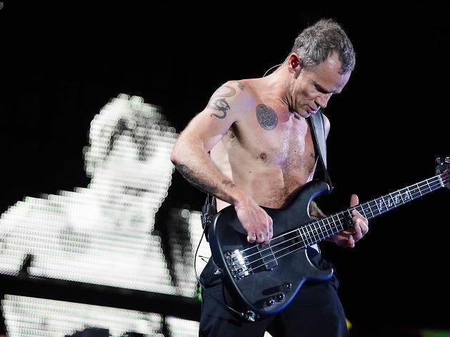 Red Hot Chili Peppers + Deerhoof