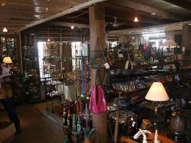 Find the perfect souvenir at Wild Gecko