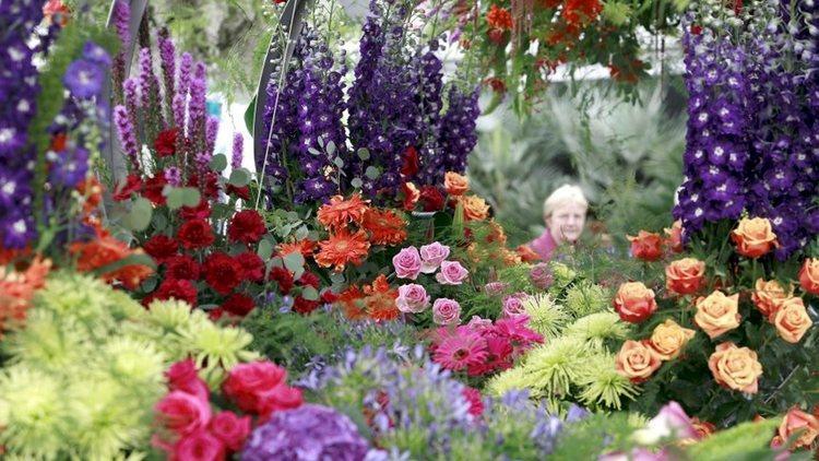 (© Royal Horticultural Society)