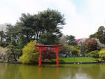 Sakura Matsuri 2013 at the Brooklyn Botanic Garden