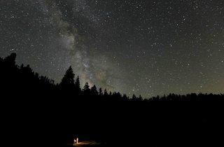 Lost in Yosemite  (© Steven Christenson, 2011)