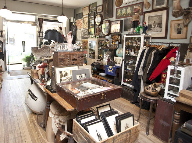 For stocking your cabinet of curiosities: Obscura Antiques and Oddities