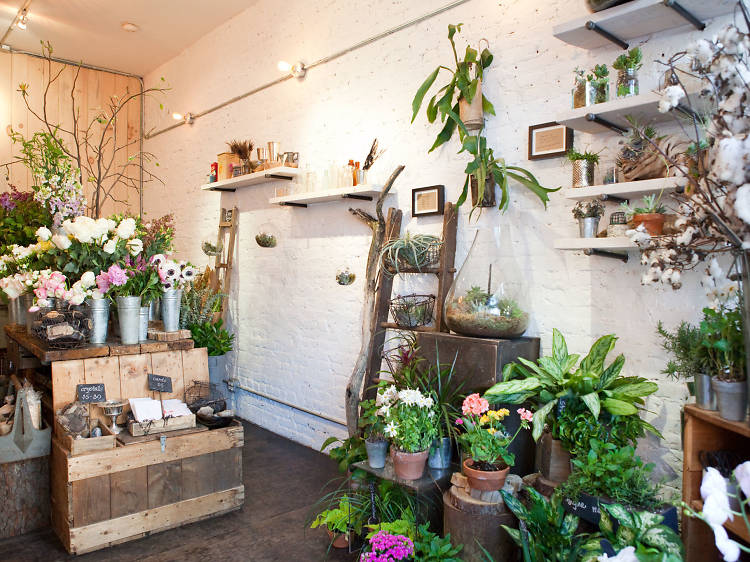 Check out the best flower shops in NYC