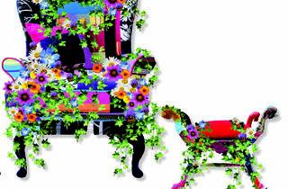 The Balcony Gardener
