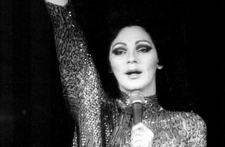 The Holly Woodlawn Show