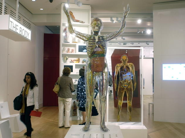 Head up to the Wellcome Collection