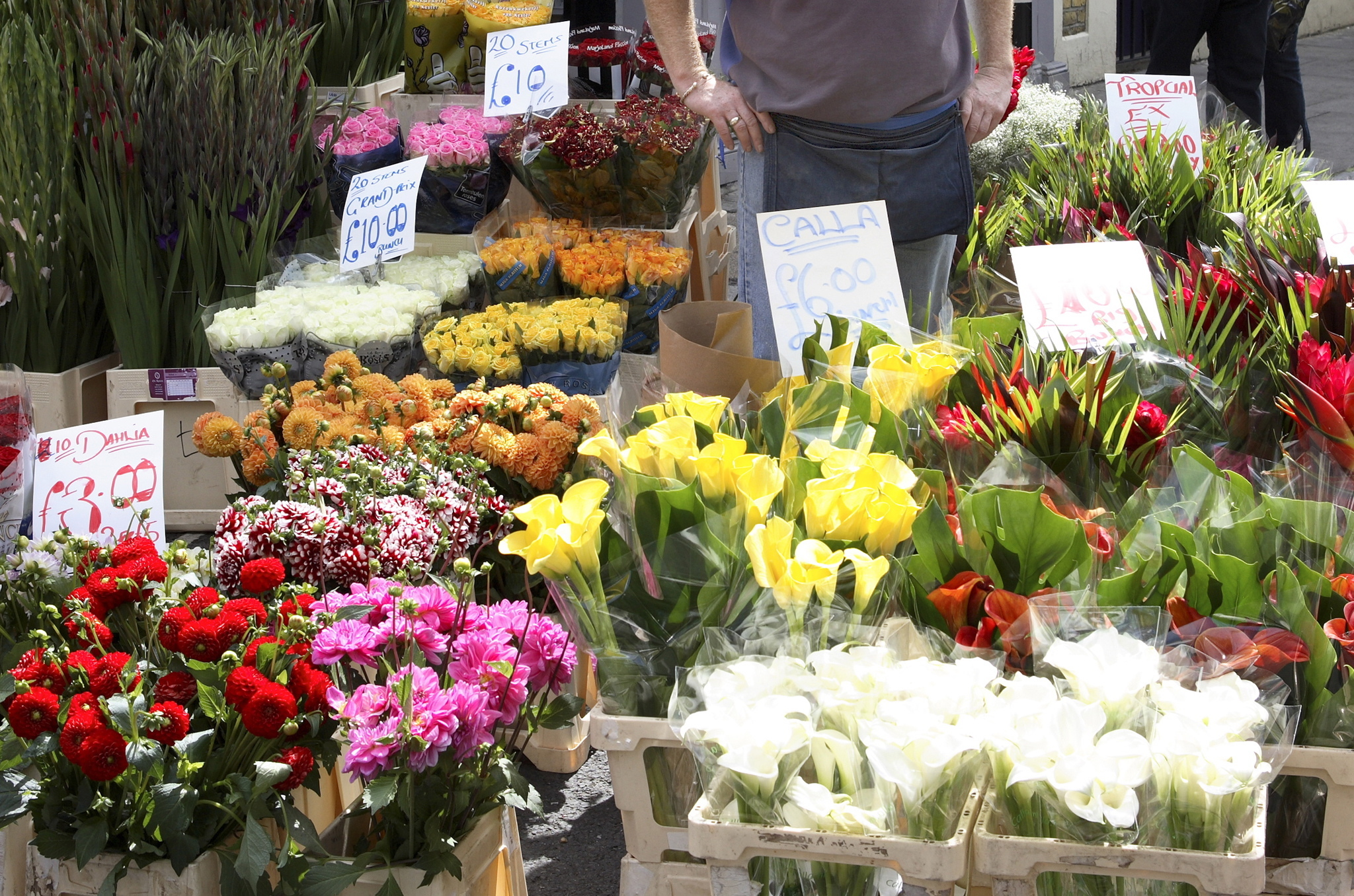 Get up early to see Columbia Road in full bloom