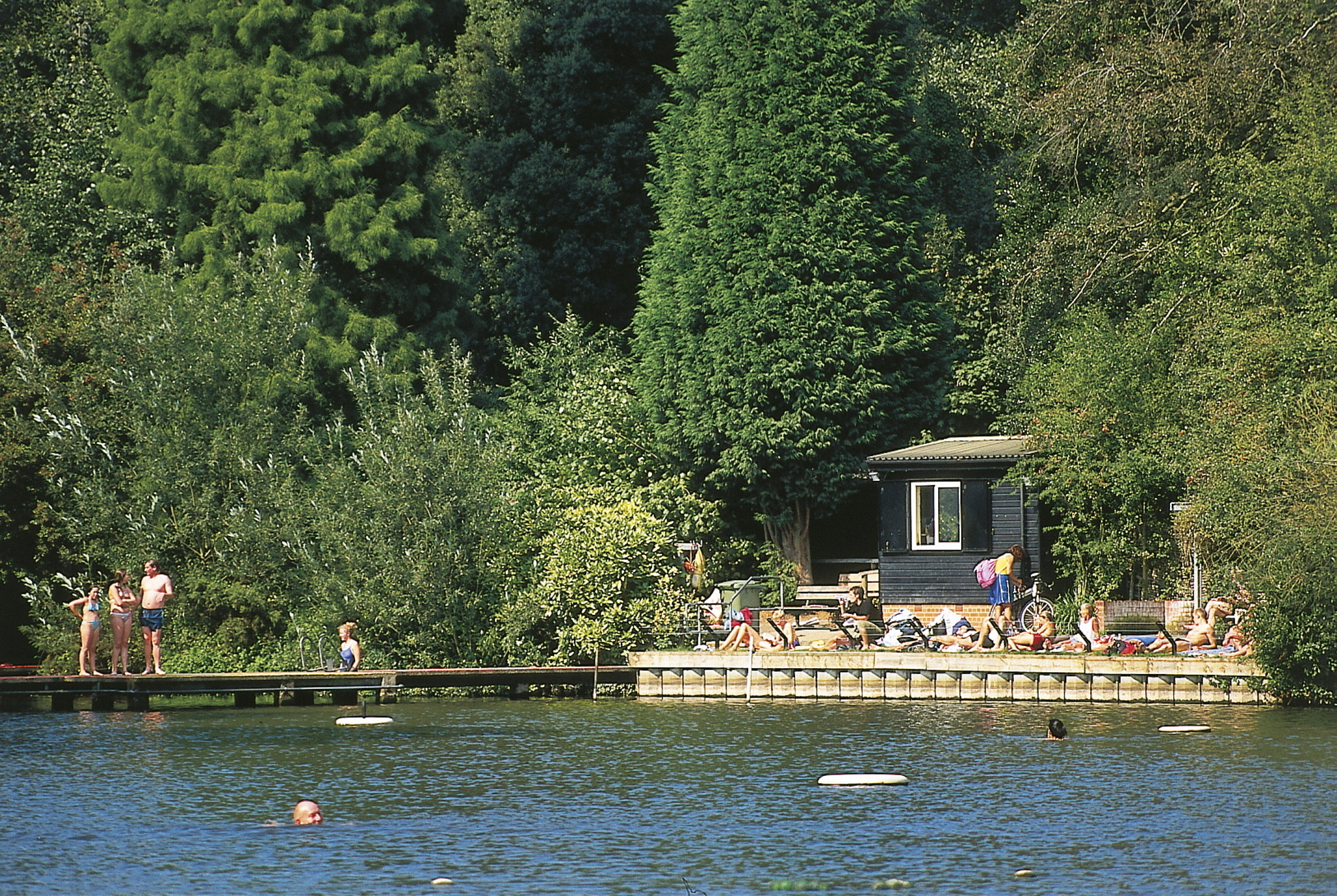Brave the chilly waters of Hampstead Heath's swimming ponds