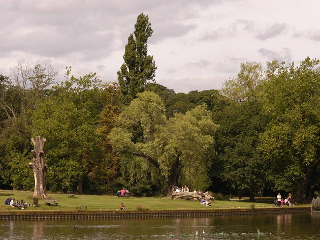 Hampstead Area Guide Pubs Bars Restaurants And Things To Do In Hampstead And Hampstead Heath