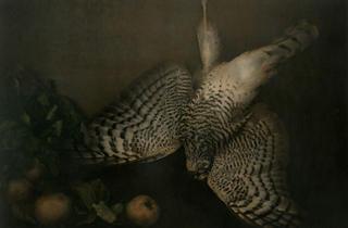 Ingar Krauss, 'Nature morte'